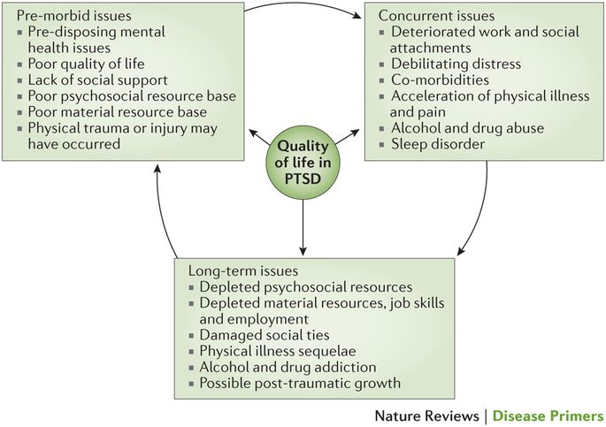 Figure 7: Timing of quality of life issues with PTSD.: Several domains of quality of life are affected in patients with post-traumatic stress disorder (PTSD) at different times.