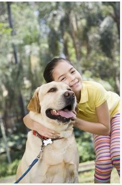 What Are The Best Dog Breeds For Kids Pethealth Baileysblend