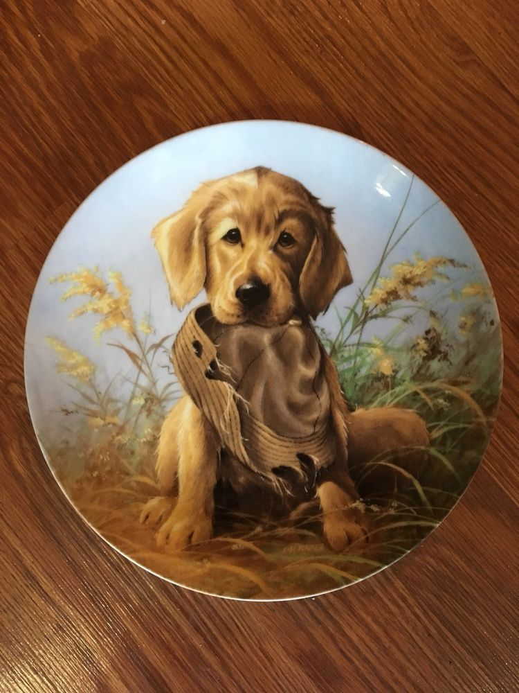 Details About Caught In The Act The Golden Retriever Collector