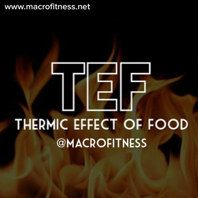 macrofitness | The thermic effect of food is the caloric