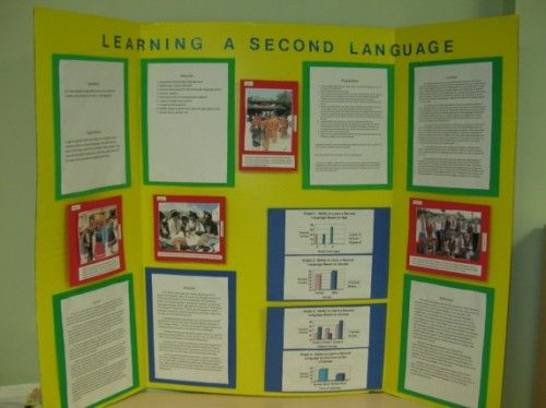 Science fair project research
