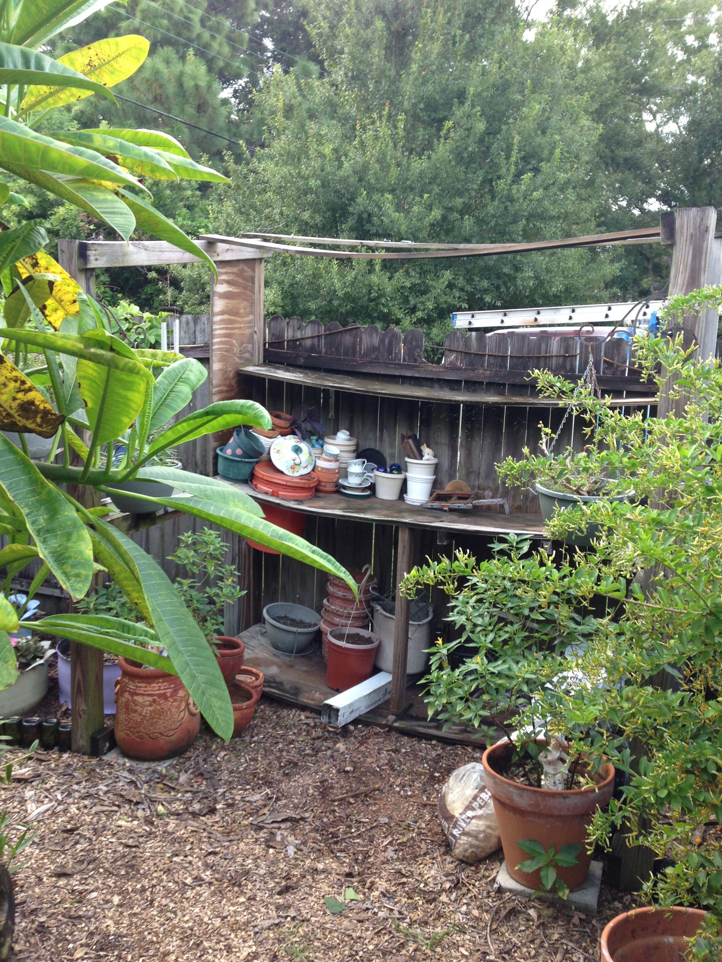 Pin by Crespo on Yard Yard, Plants