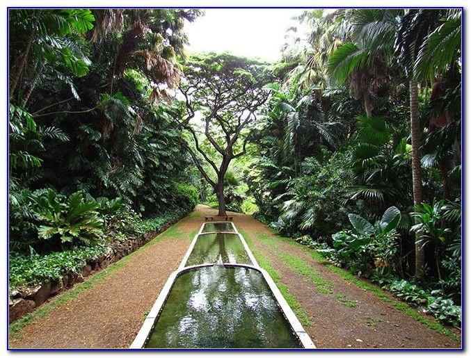 Image result for national tropical botanical garden | L Precedents ...