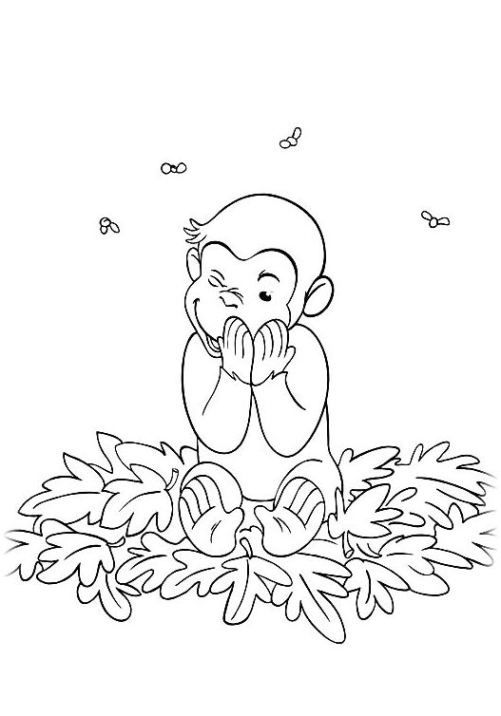 Coco Der Neugierige Affe 25 Lustige Malvorlagen Wenn Du Mal Buch Ausmalbilder