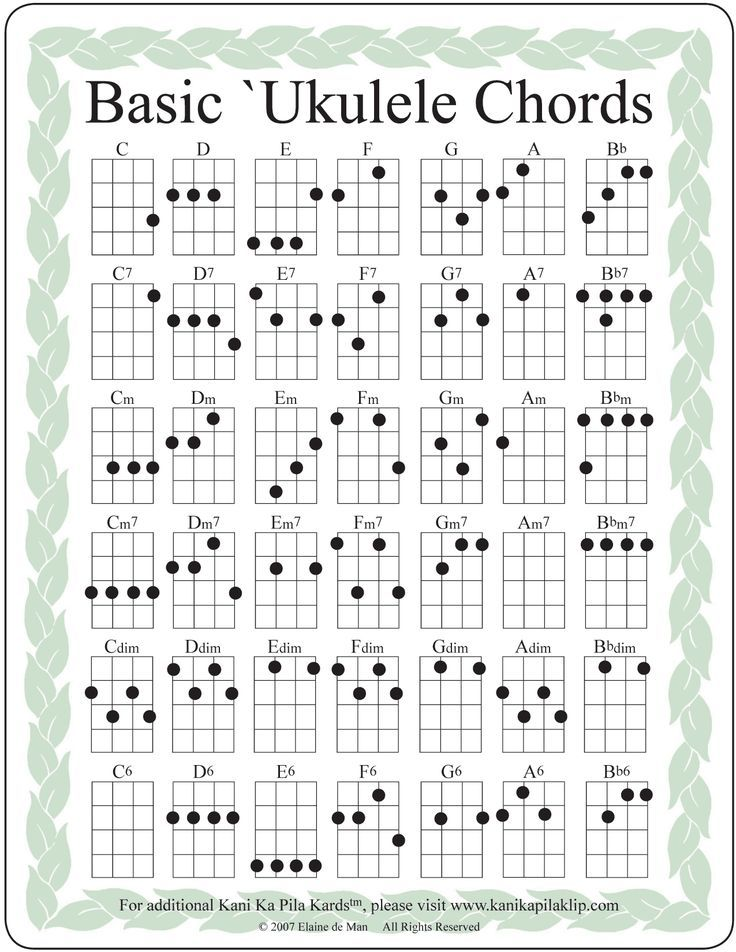 Image Result For How To Play The Ukulele Book How To Tune And Play