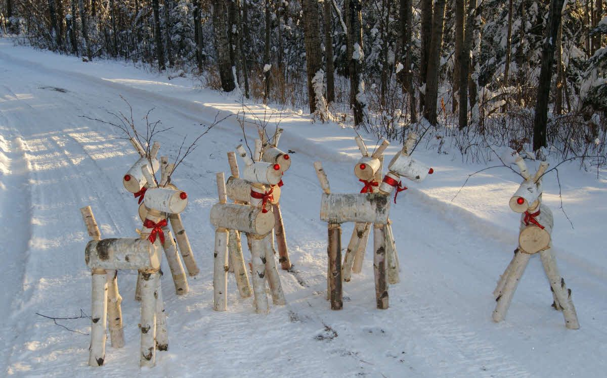 The deer herd made with the e z log tenon cutter out of for White birch log crafts