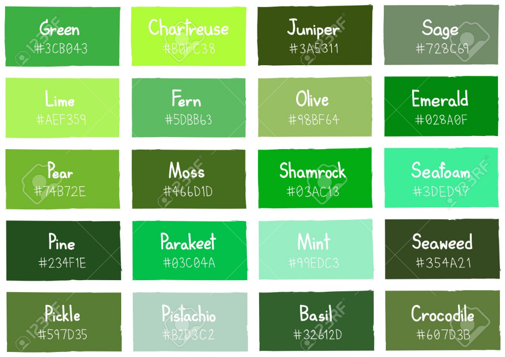 Stock Vector Green color chart, Green color names