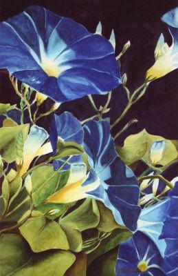 Morning Glories Angella Dagenhart Flower Painting Blue Morning Glory Morning Glory