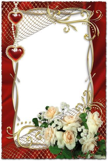 white roses on wedding photo frame wallpapers and more pinterest white roses wedding and photos