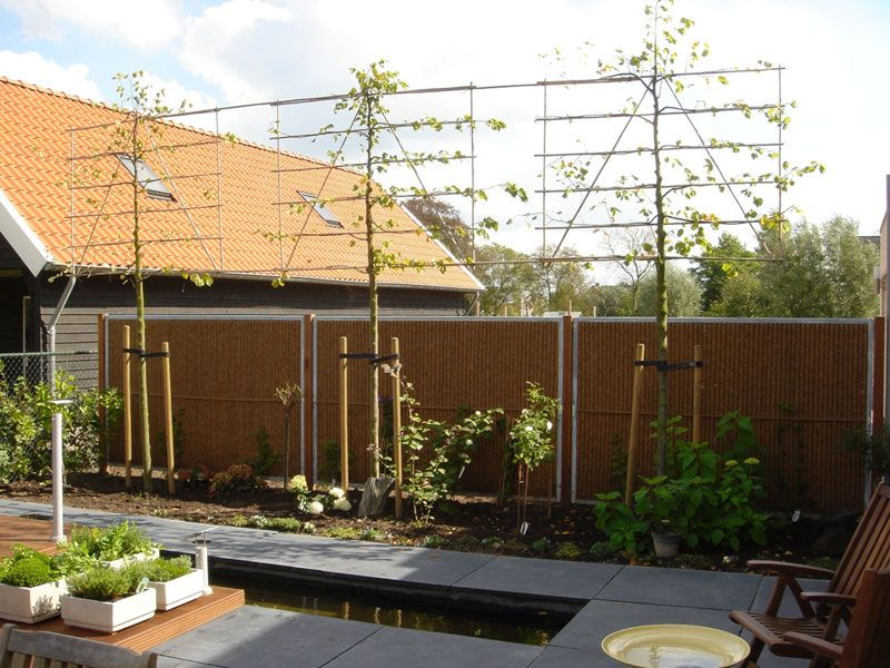 OutdoorPrivacyScreens Kokowall Garden Privacy Screen burgeon