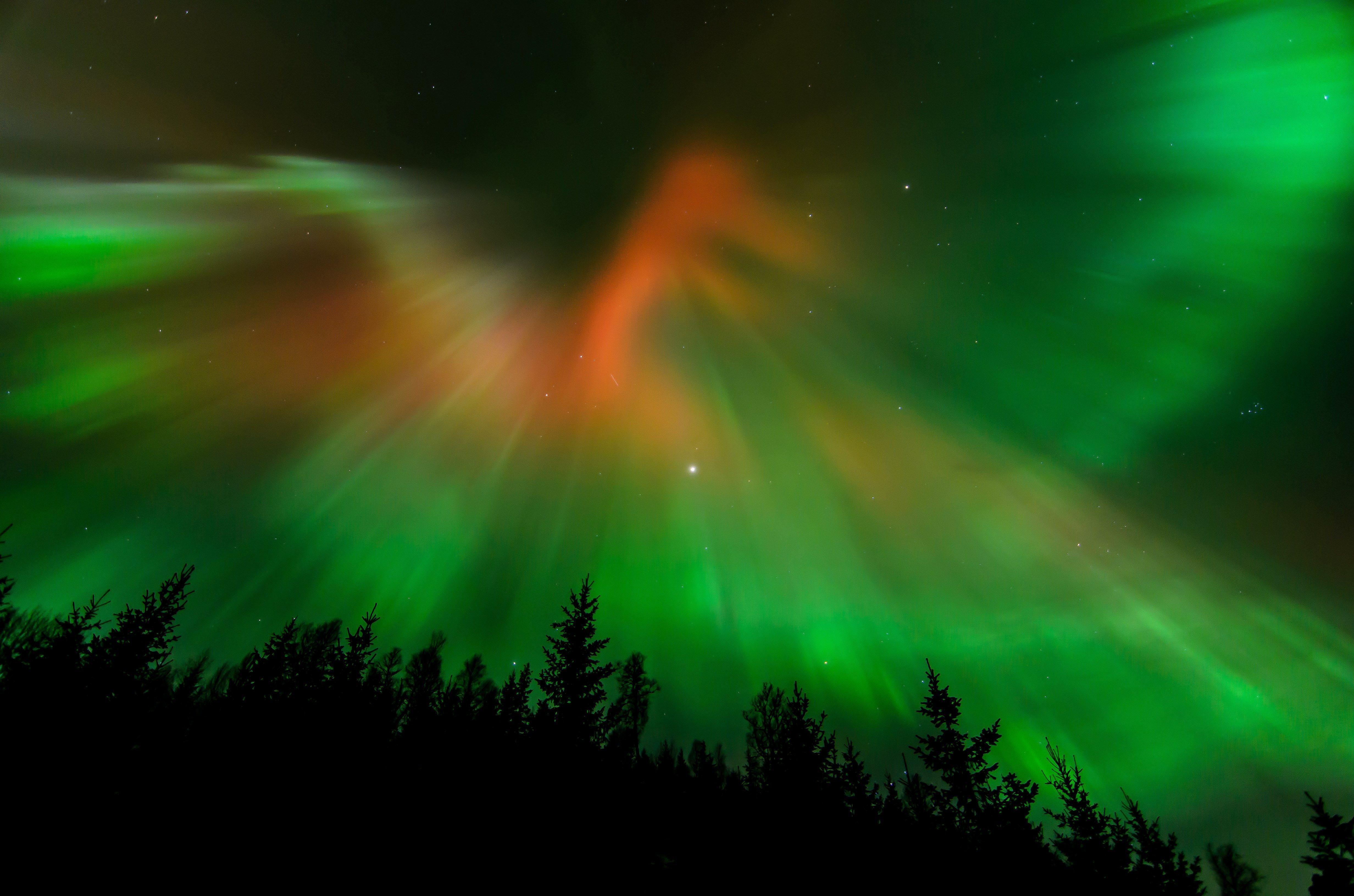 #4k wallpaper aurora borealis (4928x3264)