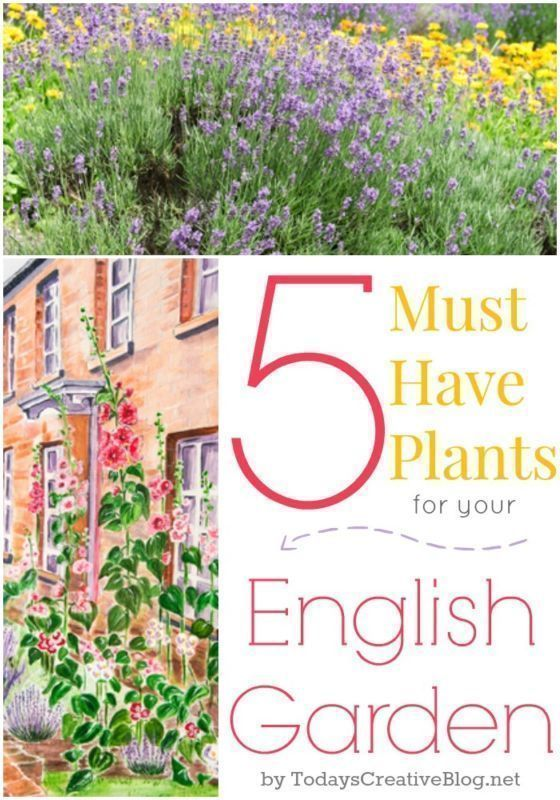 5 Must Have Plants For Your English Garden | Create The Cottage Style Garden  Youu0027