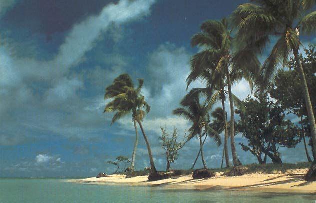 Florida West Coast