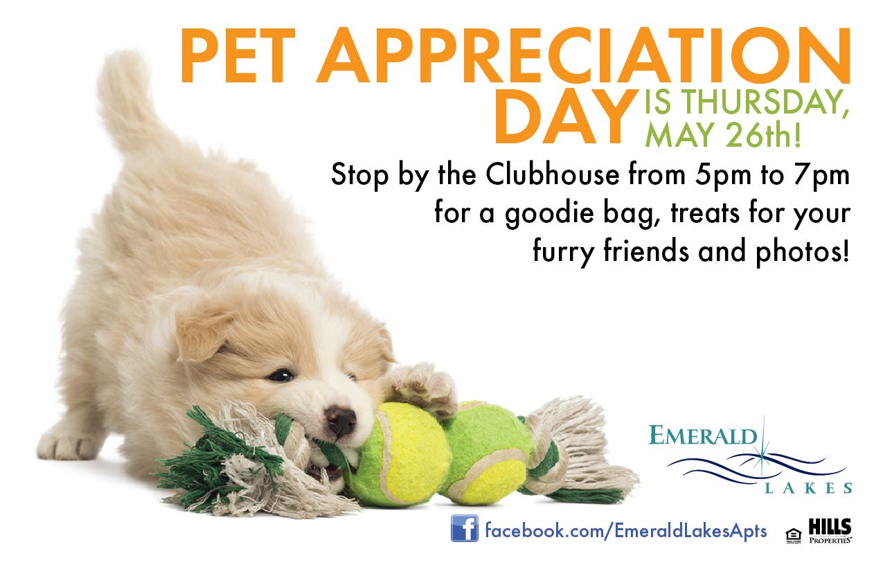 Pet Appreciation Day Resident events ideas apartments