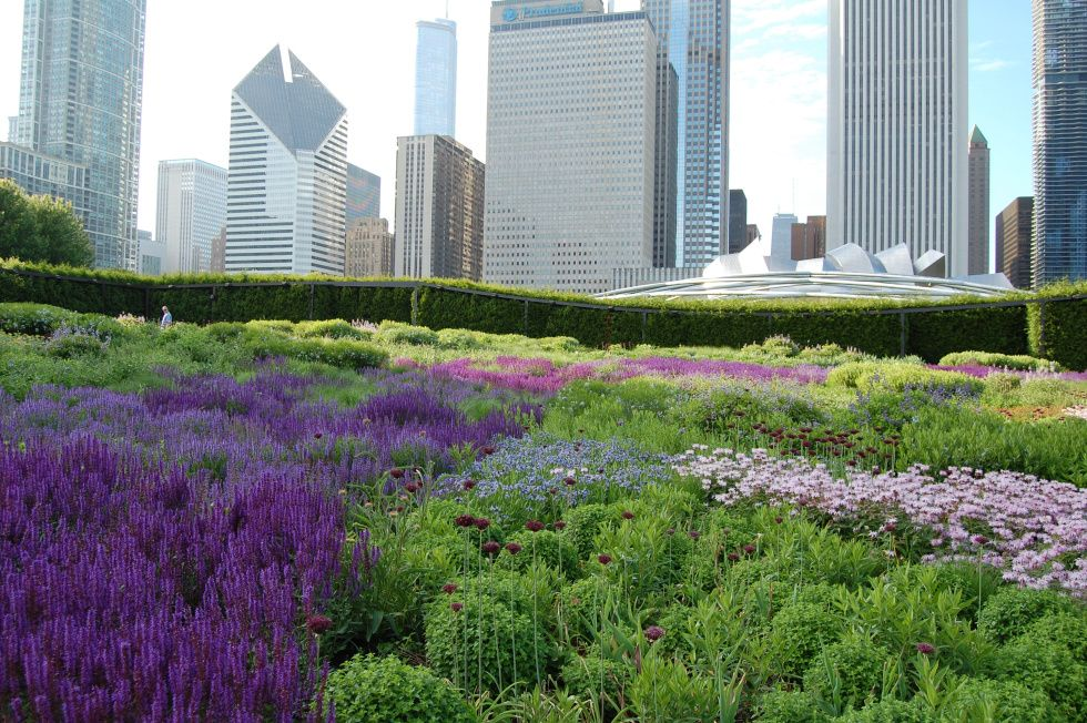 Chicago S Lurie Garden With Images Urban Garden Rooftop