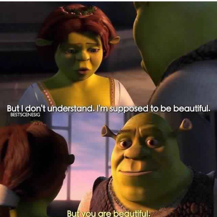 Shrek Quotes Delectable Shrek Quotes  Moviessss  Pinterest  Shrek Quotes Shrek And Movie