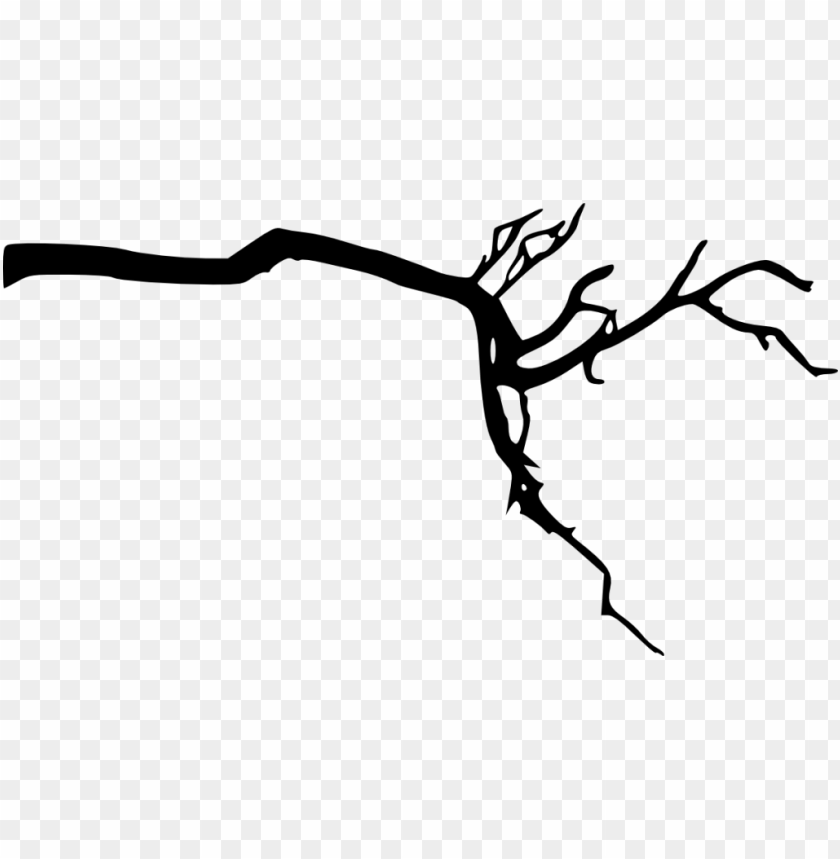 Tree Branch Silhouette Png Free Png Images Png Free Png Images Silhouette Png Tree Branches Free Png