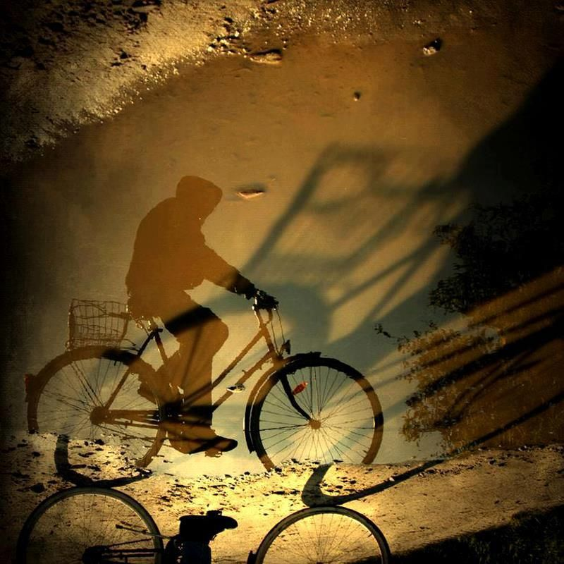 Shadows play wonderful games ~  via mahala