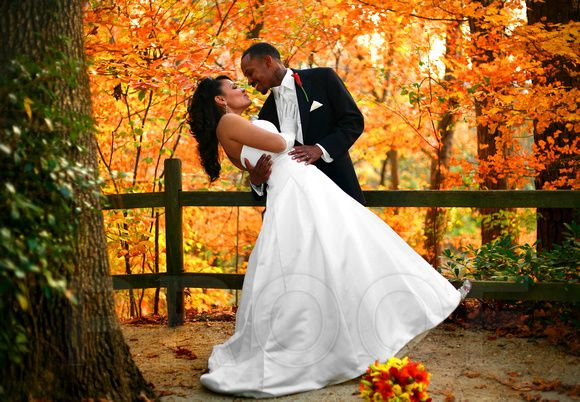 Incroyable Fall Is Perfect For Weddings, Especially With The Colorful Foliage Of Cape  Fear Botanical Garden