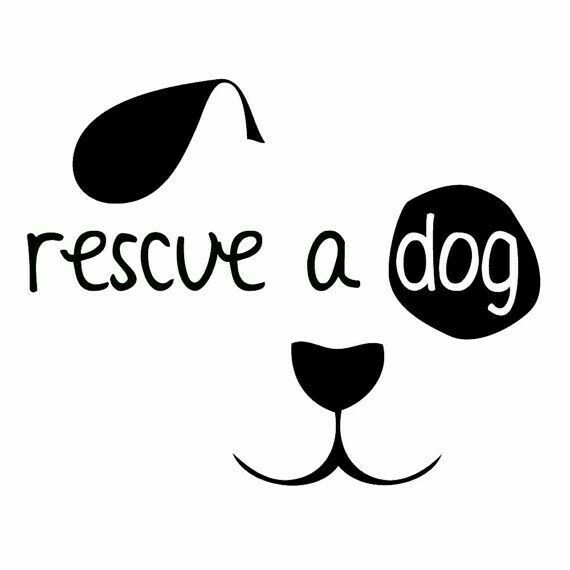 Pin By Katilyn On Cricut Dogs Car Decals Rescue Dogs