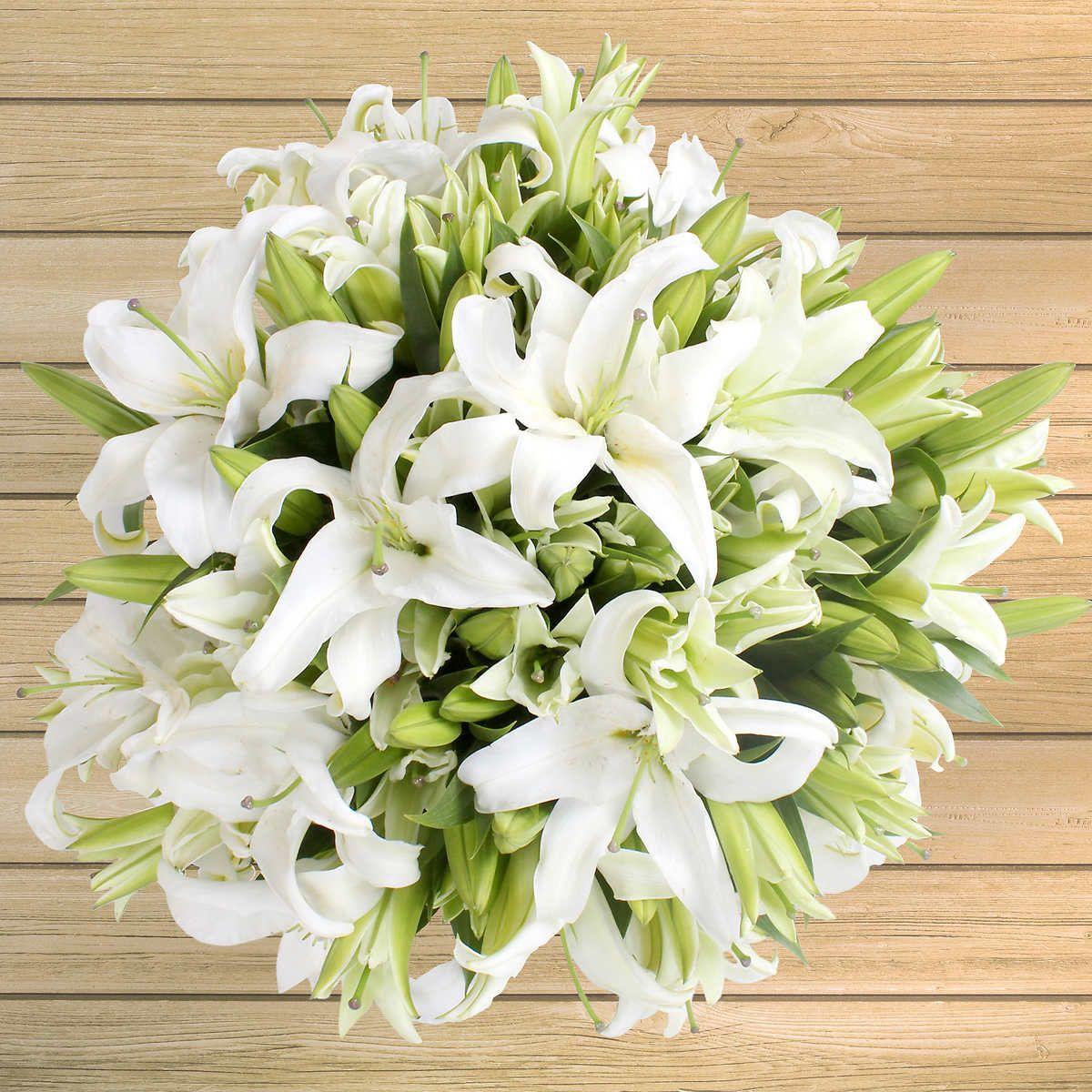 40stem Oriental Lilies Costco flowers, Oriental lily