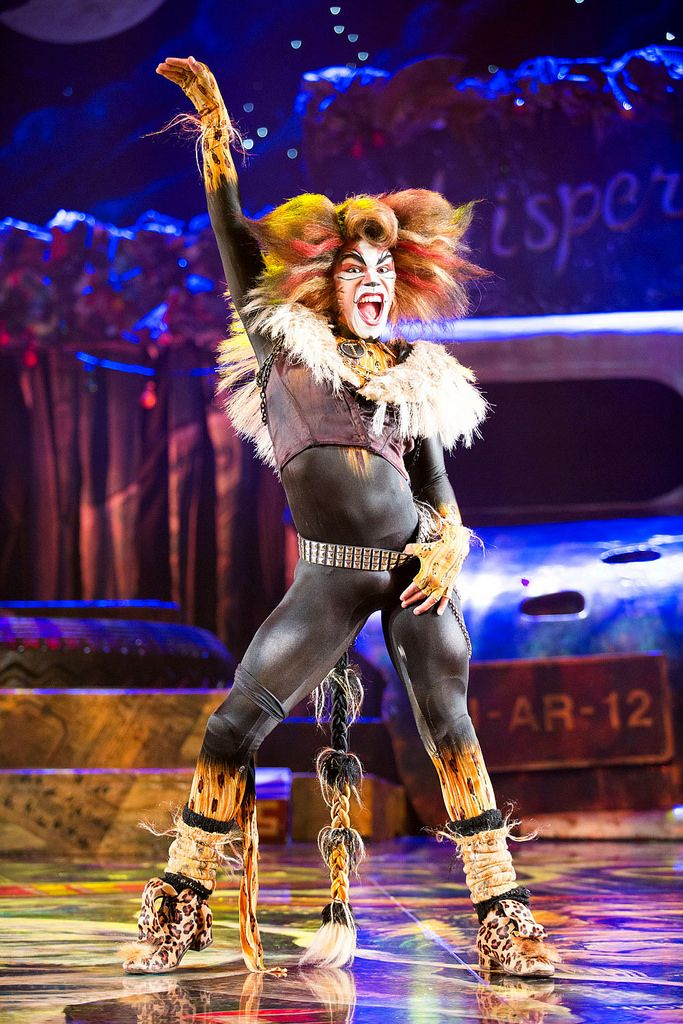 Catch CATS the musical in Singapore before it ends its run