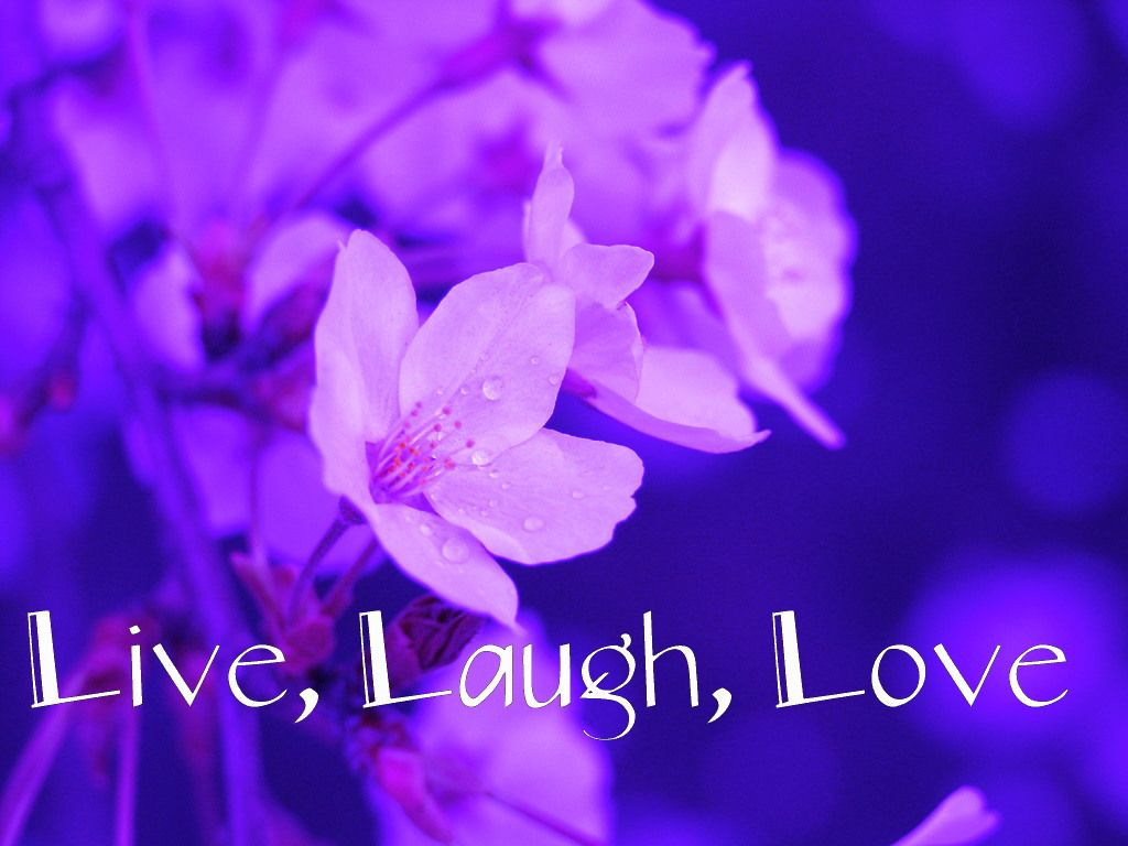 Live Laugh Love Wallpaper Live, Laugh, Love Wallpaper