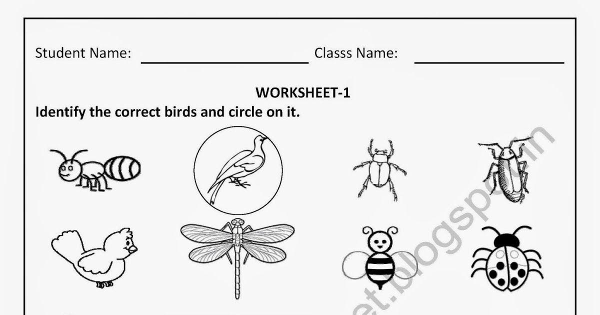 Free Printable Worksheets for Nursery, Kindergarten Senior KG ...