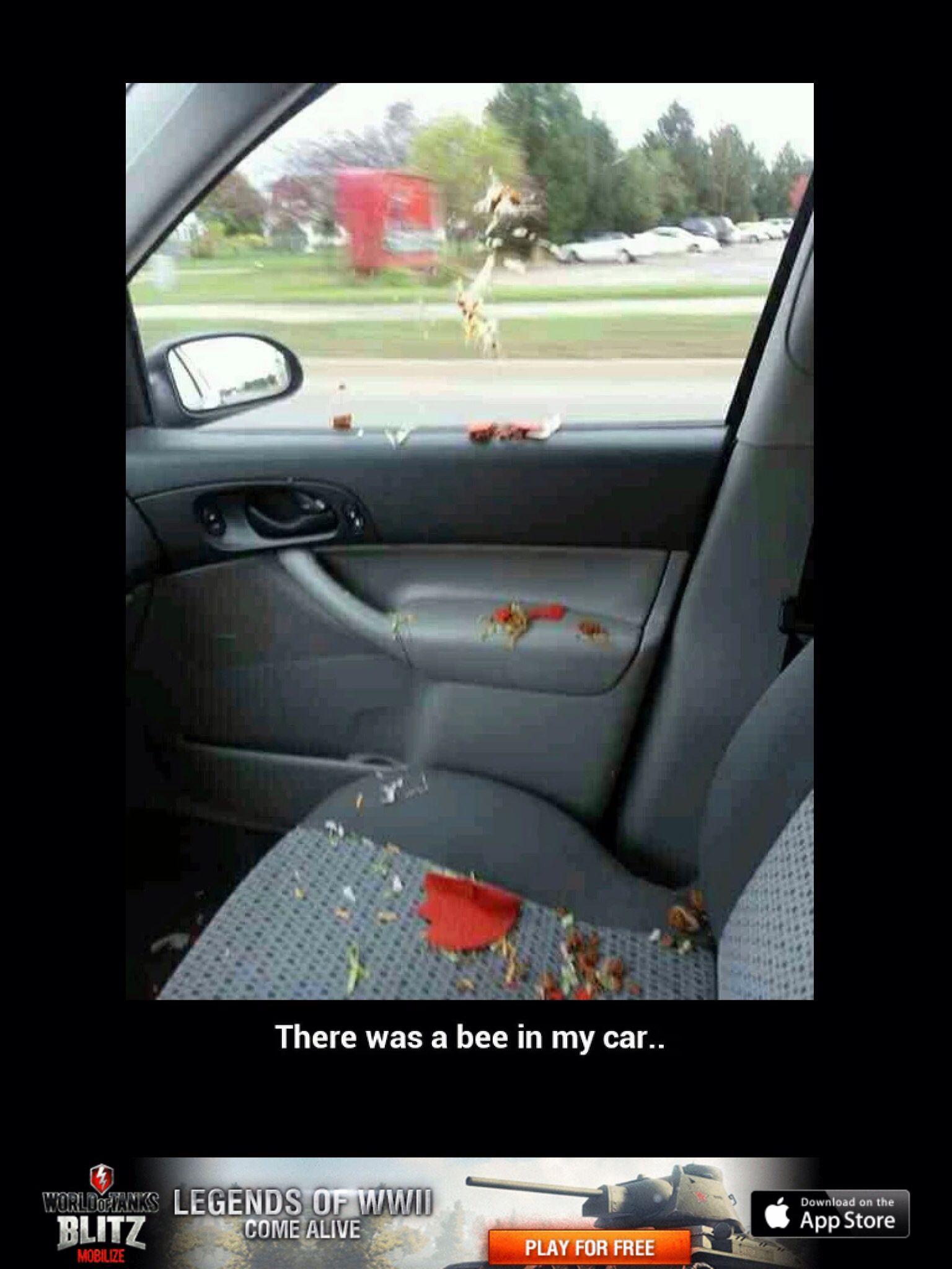Pin by Katherin Lokshin on Bee | Funniest snapchats, Funny