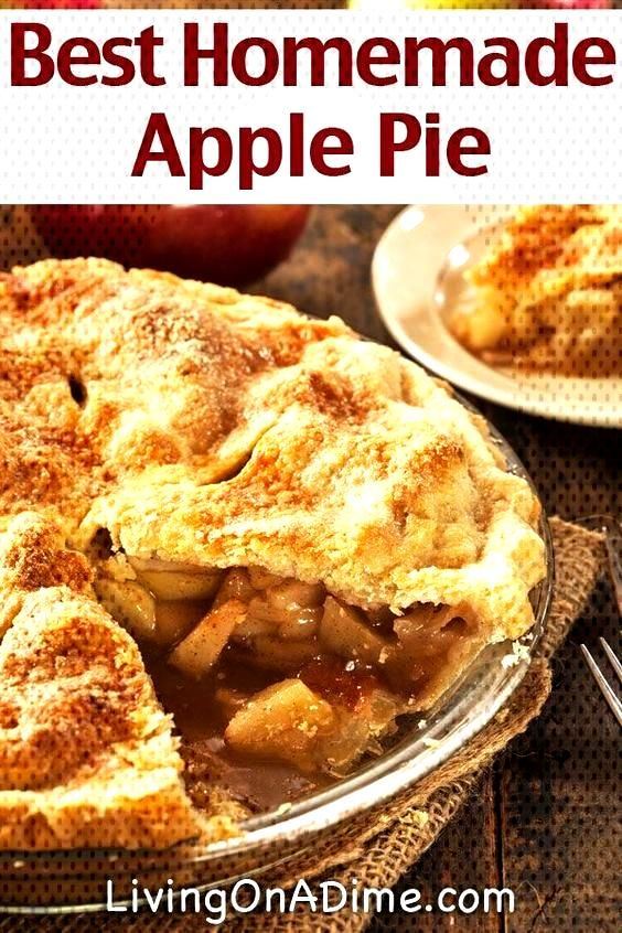 This is the Best Homemade Apple Pie Recipe you will ever taste! It has been in our family for gener