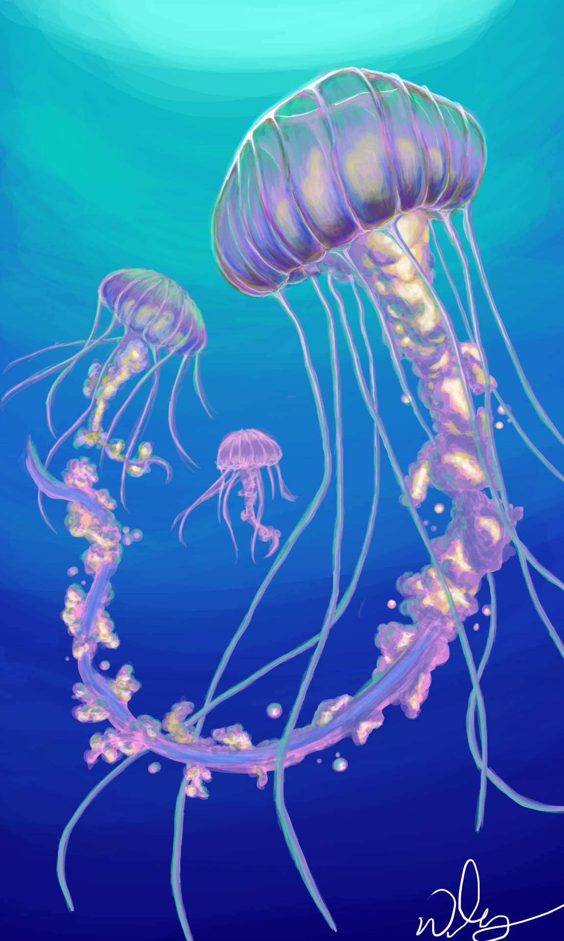 Jellyfish painting tumblr images for Jelly fish painting