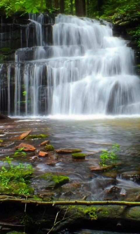 Fondo De Pantalla Agua En Movimiento Gratis Pesquisa Google Cascadas Jardines Bonitos Fondo