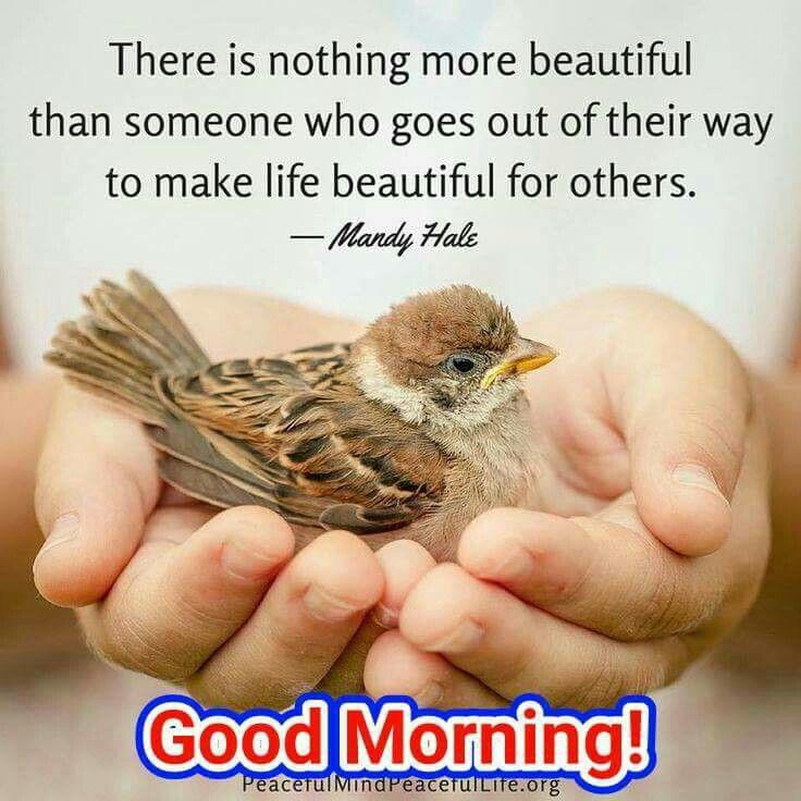 Pin By Jaya Jayakumar On Good Morning Peaceful Mind Peaceful Life Morning Greetings Quotes Good Morning Quotes