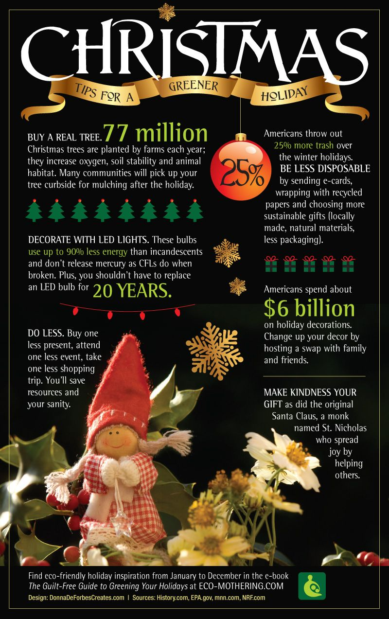 Which Kind of Christmas Tree is Most Eco-Friendly? | Eco ...