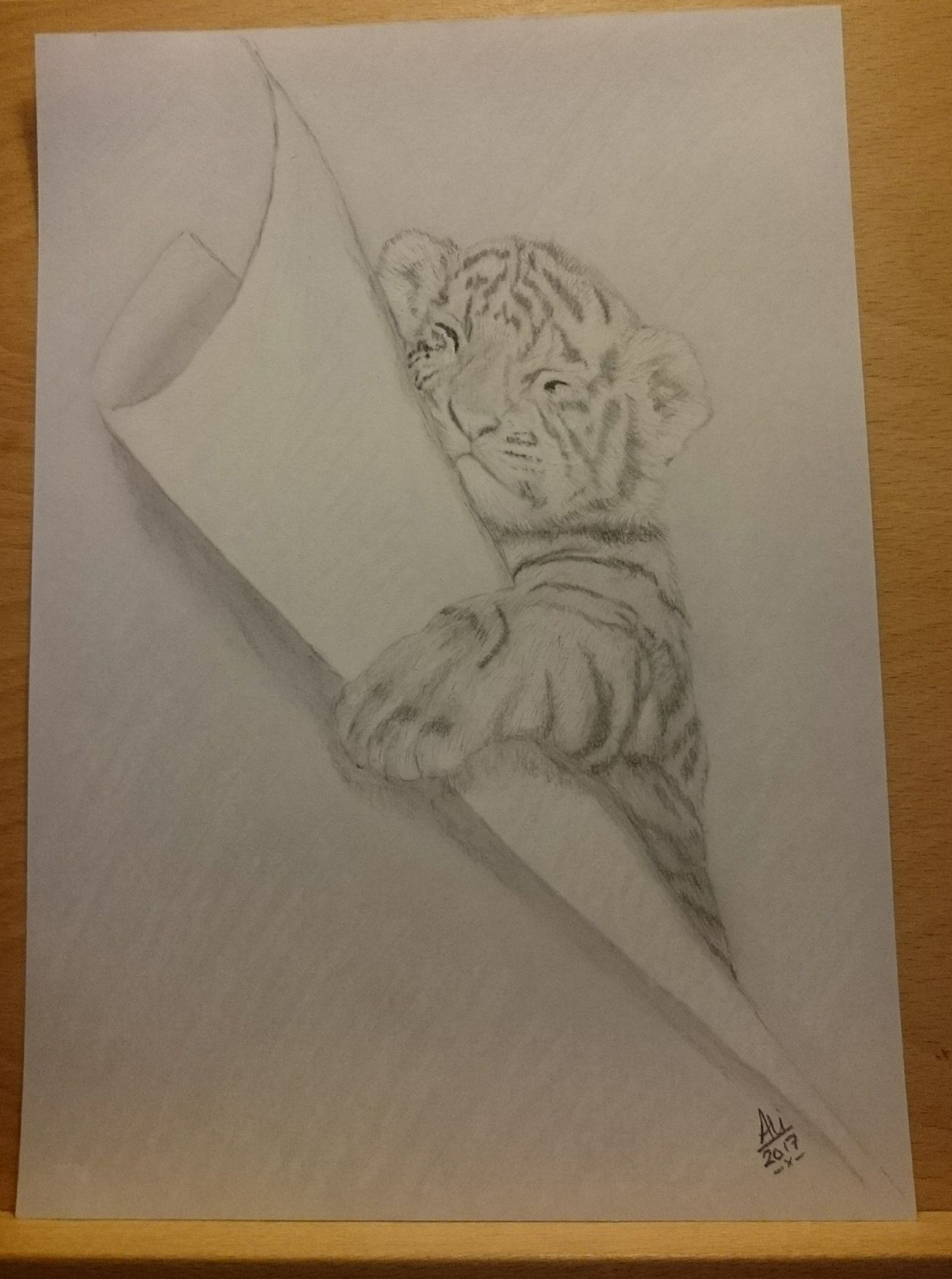 Sleeping Tiger cub Available for sale Sketch only £20 Framed in ...