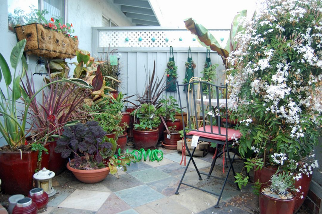 Container Gardening Ideas For Small Spaces