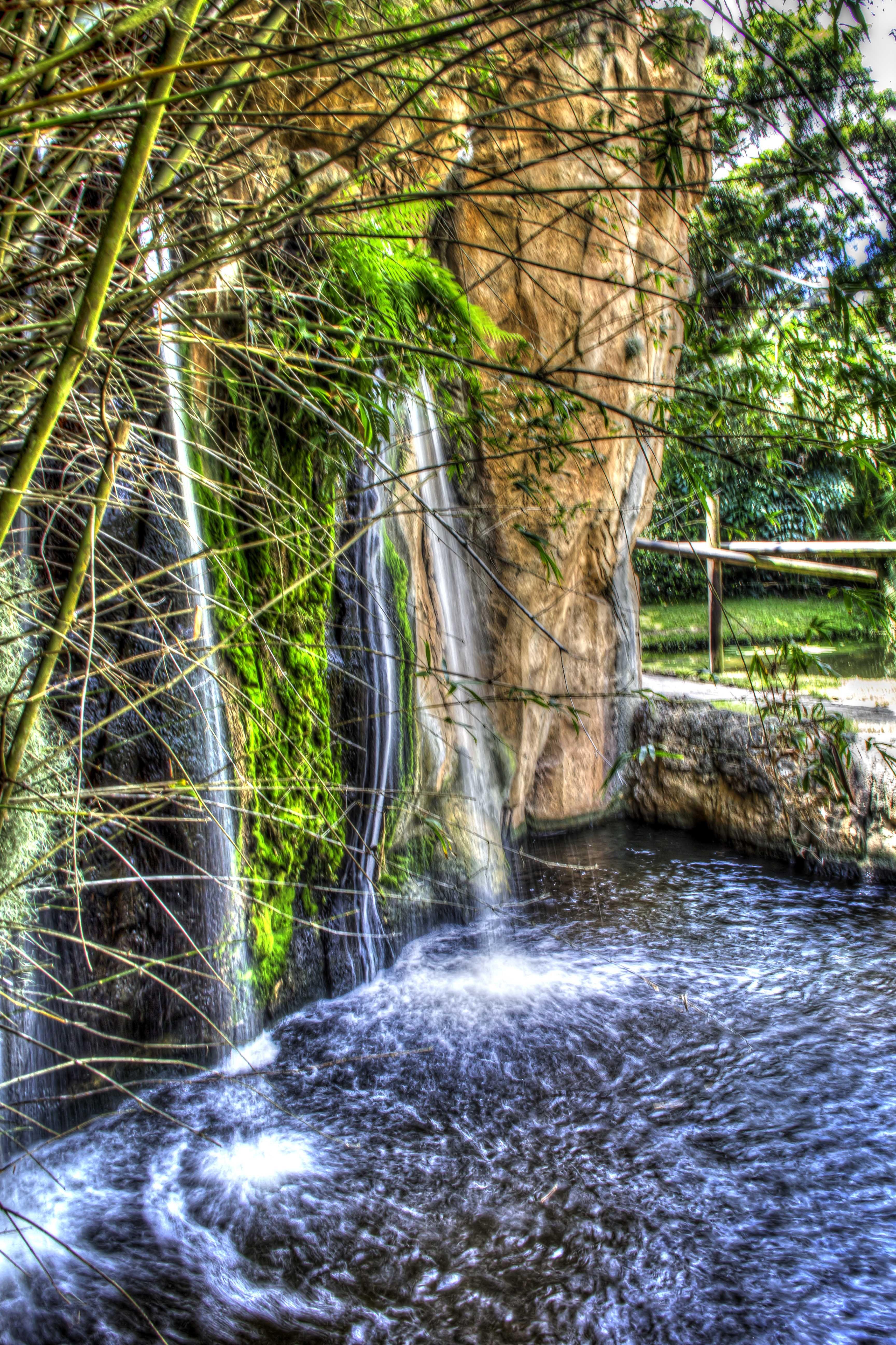Water Fall | Palm Beach Zoo | Pinterest