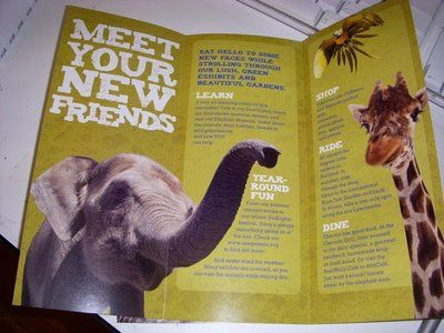 Zoo Brochure GRAPHIC DESIGN Pinterest Brochures And Visual