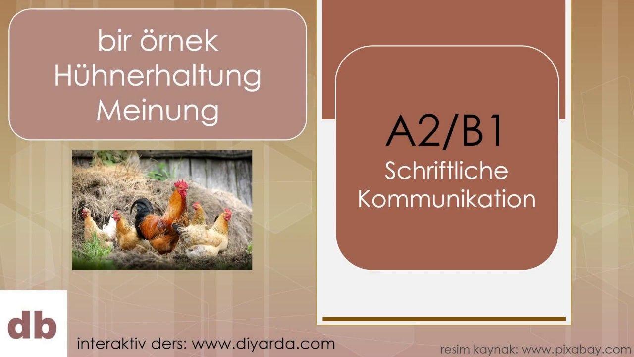 A2 B1 Schriftliche Kommunikation Prufung Kommunikation Meinung Interaktiv
