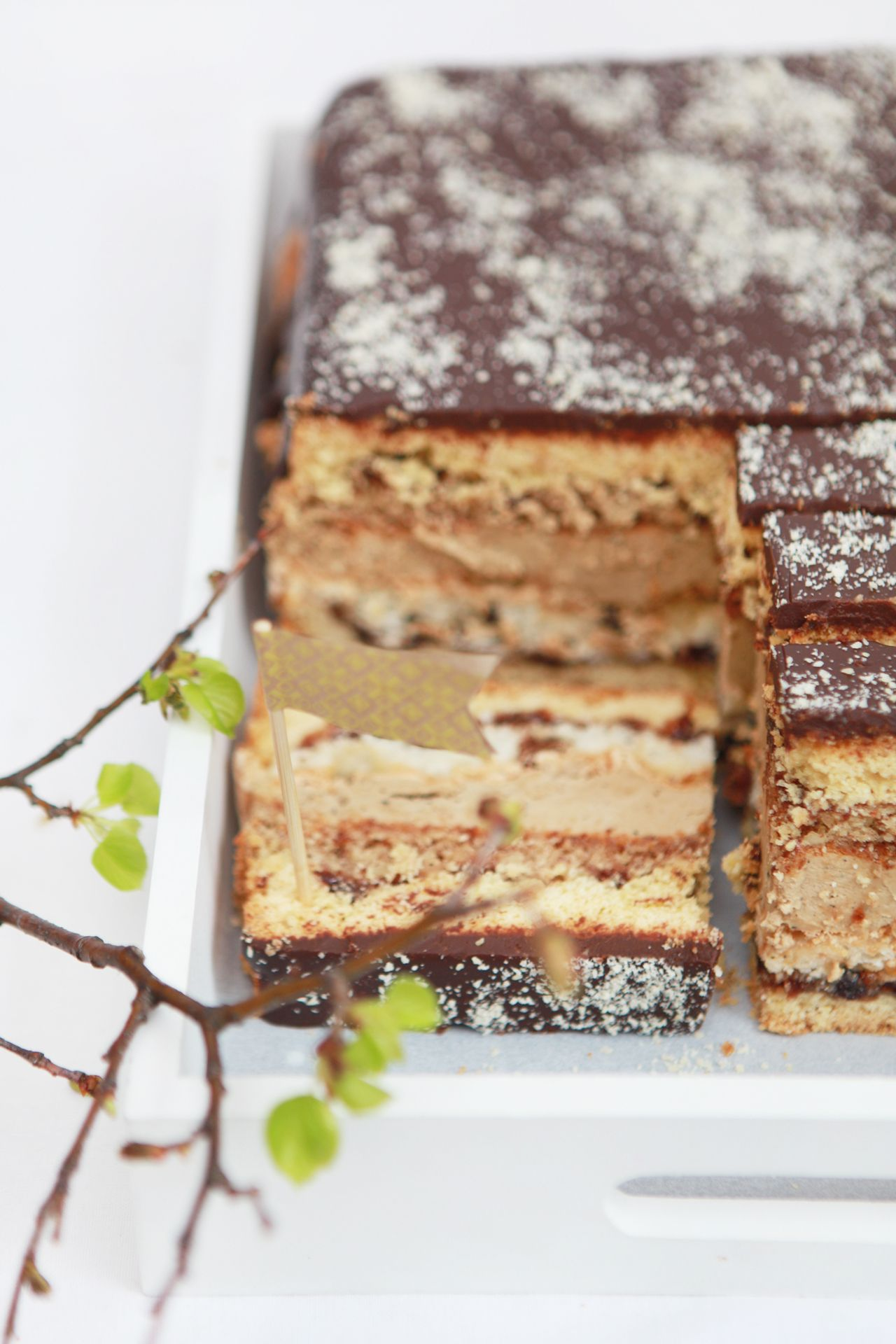 layered coffee cake with raspberry jam, dried fruit & nuts and chocolate ganache