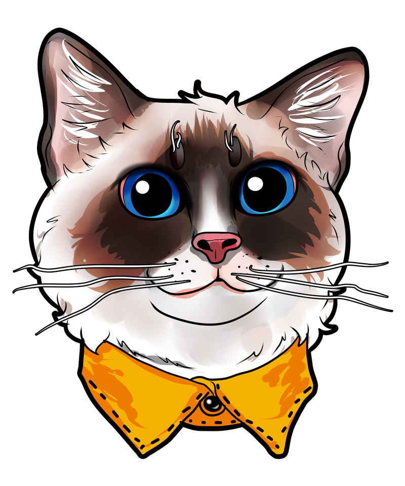 Ragdoll Cat Face Cats Funny Cute Sweet Kitty Gift Art Print By Webo And Dragons X Small Cat Illustration Ragdoll Cat Cat Painting
