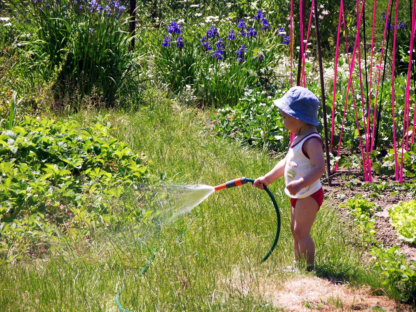 17 Best 1000 images about Children Gardening on Pinterest Gardens