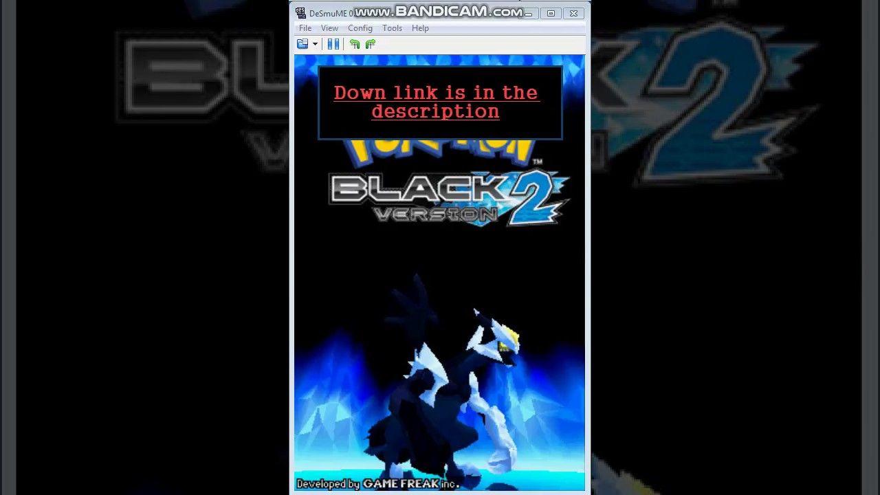 nds pokemon black