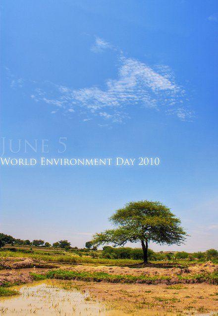 Poster Hari Lingkungan Hidup Illustrations Posters Poster