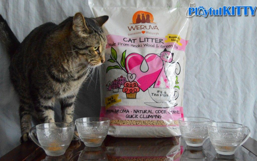 It's Tea Time! Weruva's Sustainable Cat Litter