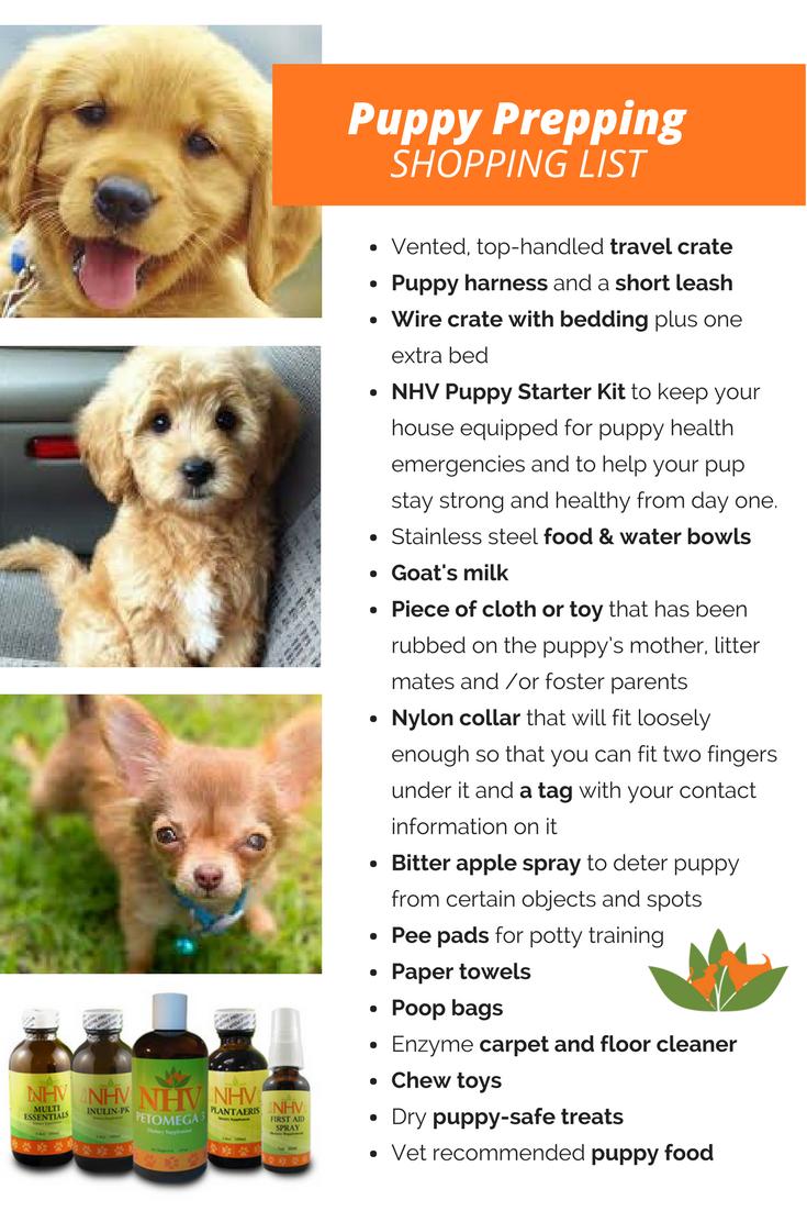 Puppy And Kitten Starter Kit Puppy Starter Kit Dog Care Tips Puppy Health