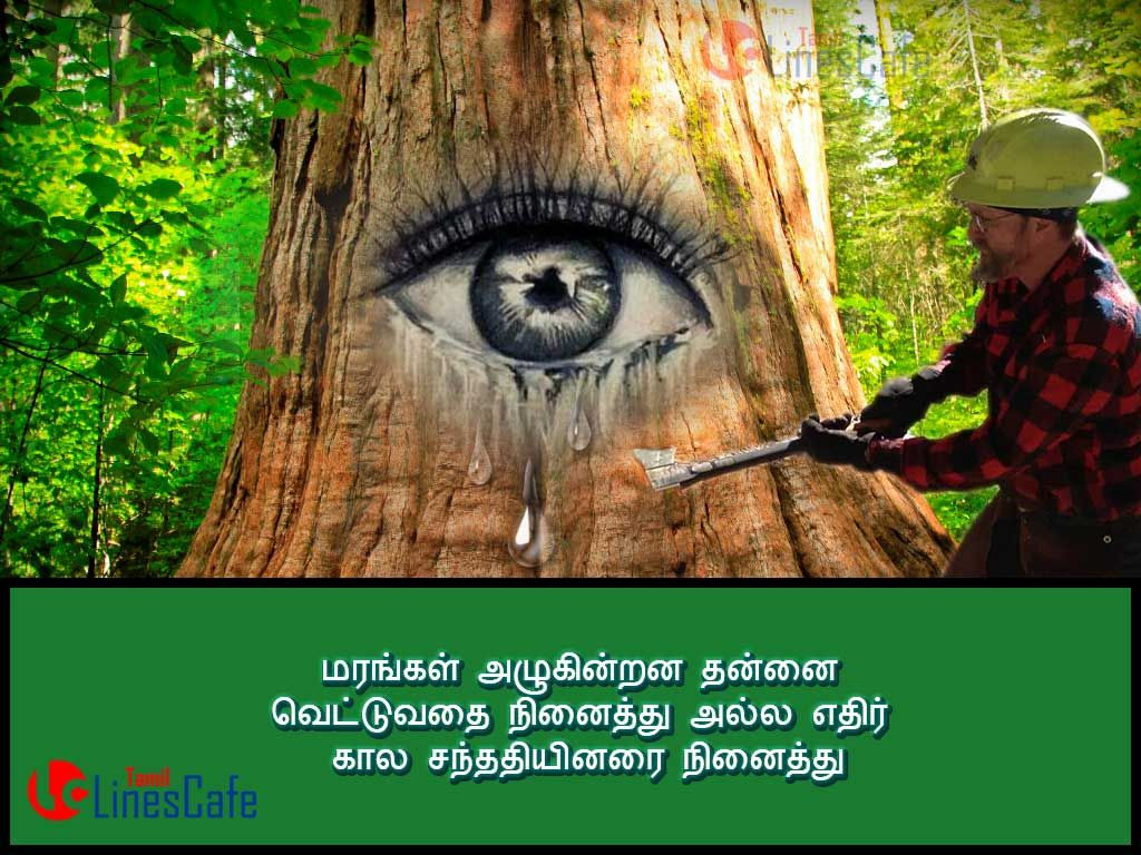 Kavithai About Trees Tears In Tamil Cool Tree Things Quotes