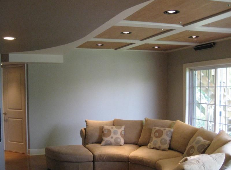 Best living room ceiling materials cheap basement ideas for Cheap ceiling ideas living room