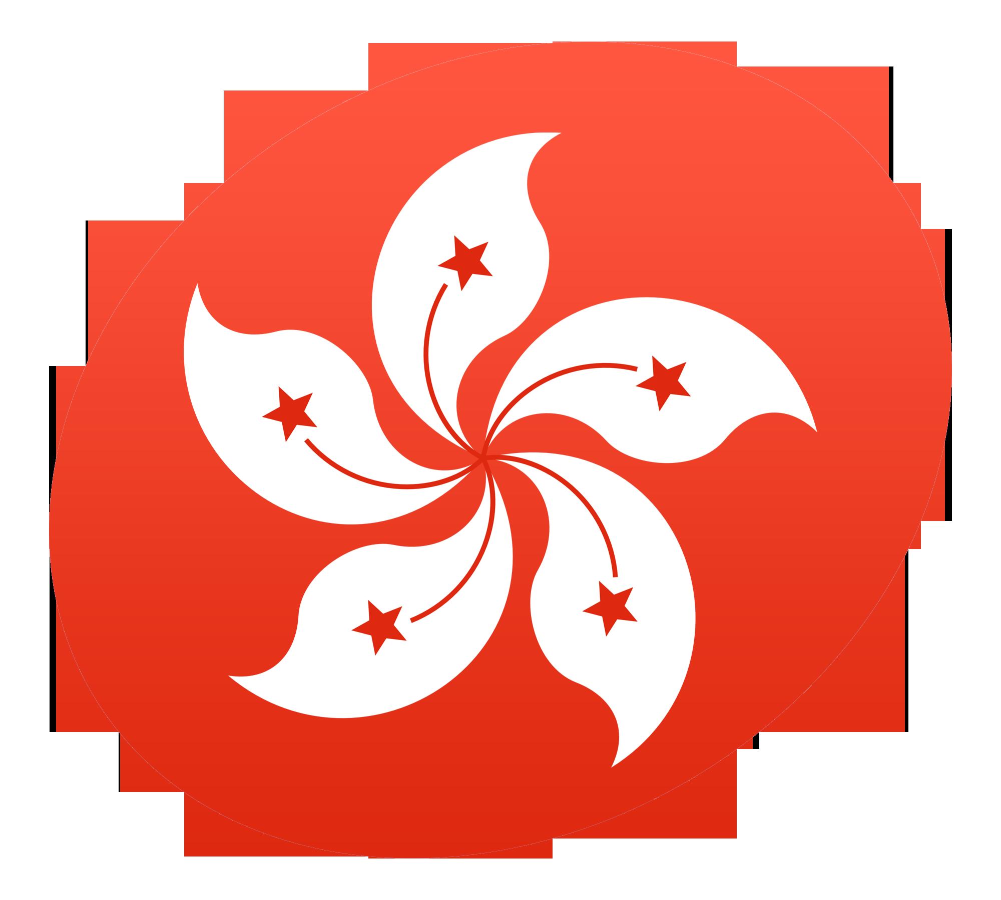 Pin By Cristina Morfe On Idea Design For Sports Hong Kong Flag Hong Kong City Flags