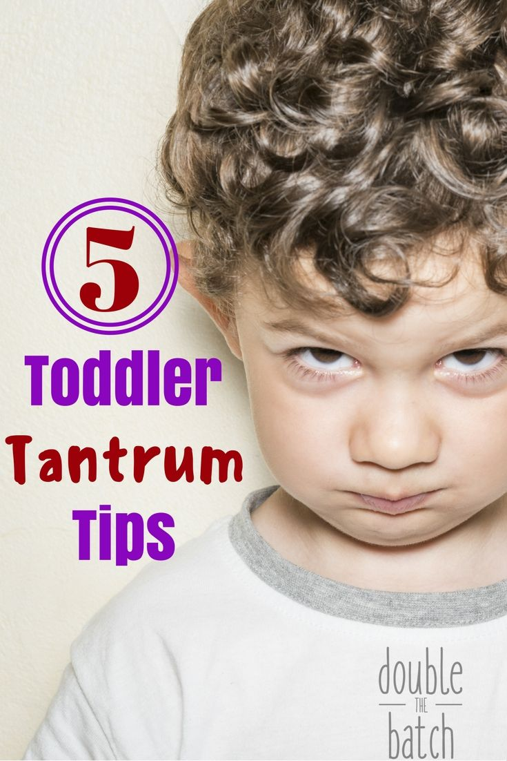 These 5 toddler tantrum tips will help you keep your sanity and enjoy the toddler stage so much more!